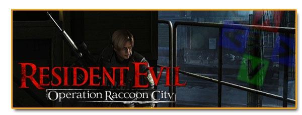 Cabeceras_resident_raccoon