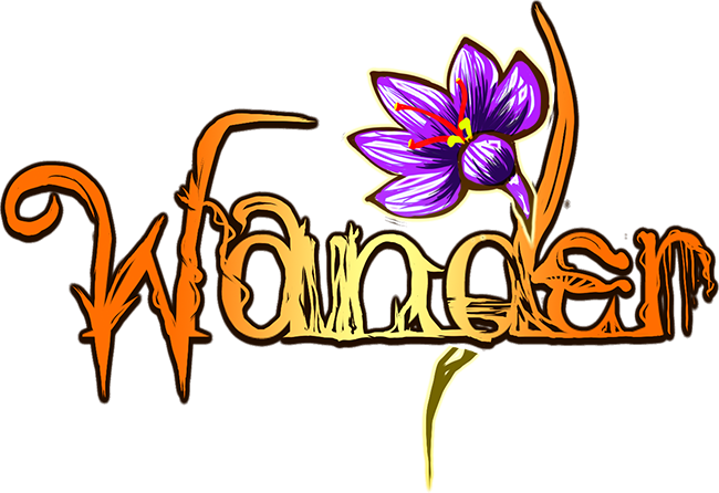 1416422784-wander-logo
