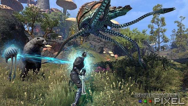 analisis Online Morrowind img 004